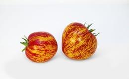 le =Ripe bariolent deux tomates avec le modèle naturel peu commun Belles tomates peu communes photographie stock libre de droits