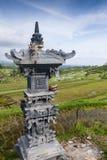 Le risaie di Jatiluwih. Fotografie Stock Libere da Diritti