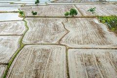 Le risaie fondo, nella stagione delle pioggie, l'agricoltore preparano uno spazio per la piantatura del riso fotografia stock