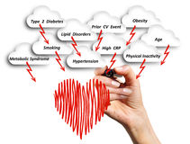 Le risque de maladie cardio-vasculaire Photos libres de droits