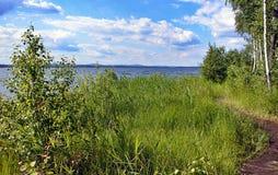 Le rivage d'un lac en été Photographie stock