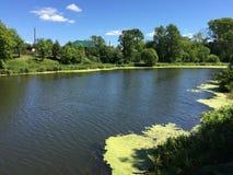 Le rivage de l'étang de ville Images stock