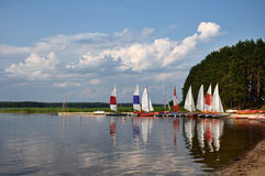 Le rivage de lac image libre de droits