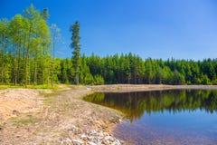 Le rivage du lac Image libre de droits