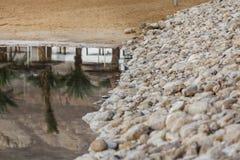 Le rivage et les paumes en pierre de sable de remblai se sont reflétés dans l'eau Photo libre de droits