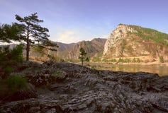 Le rivage rocheux du Katun photo libre de droits