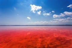Le rivage salé de Laguna Salada de Torrevieja l'espagne Image libre de droits