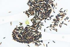 Le riz brun et les fleurs se ferment dans la vue supérieure de cuillère Photos stock