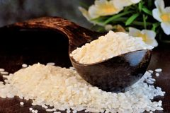 Le riz est un produit alimentaire populaire dans la cuisson, poussières abrasives de riz Le riz est une usine herbacée, culture d photographie stock