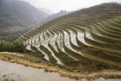 Le riz met en place des montagnes Photographie stock libre de droits