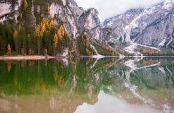 Le rocce della montagna e la foresta di autunno hanno riflesso in acqua del lago Braies, le alpi della dolomia, Italia Immagine Stock Libera da Diritti