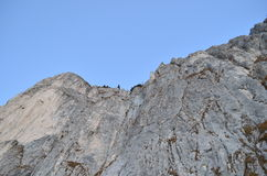 Le rocce dettagliano nei Carpathians orientali, prenotazione naturale di Piatra Craiului, Romania Immagini Stock Libere da Diritti