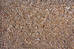 Le rocce e la spiaggia di pietra modellano il primo piano, fondo del litorale dell'estate Immagini Stock