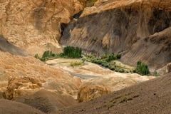 Le rocce e le pietre colourful gialle, allunano, paesaggio Leh, Jammu Kashmir, India del ladakh Fotografie Stock Libere da Diritti