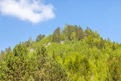 Le rocce nel parco nazionale di Adrspach-Teplice oscilla - la repubblica Ceca Fotografia Stock Libera da Diritti