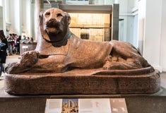 Le Roi Amenhotep III comme lion Photographie stock libre de droits