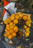 Le Roi Coconut Vendor, Sri Lanka Image libre de droits