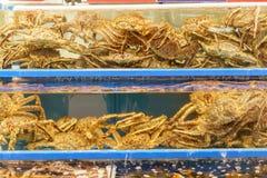 Le Roi Crab de l'Alaska dans l'étang photographie stock libre de droits