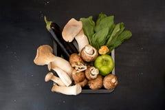 Le roi de champignons d'huître répand et des légumes sur le backgroun foncé Images libres de droits