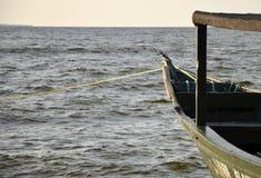 Le Roi Fisher chez le lac Victoria Photographie stock libre de droits