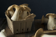 Le Roi organique cru Oyster Mushrooms photographie stock libre de droits