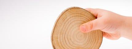 Le rondin en bois a coupé dans les morceaux minces ronds disponibles Photo libre de droits