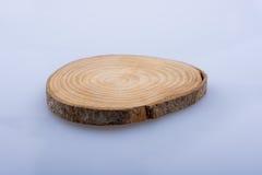 Le rondin en bois a coupé dans les morceaux minces ronds sur le fond blanc Photos stock