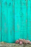 Le rondin et les fleurs roses encadrent la barrière en bois bleue de sarcelle d'hiver antique Photographie stock