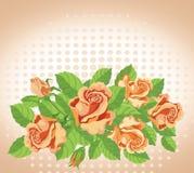 Le rose cardano benissimo illustrazione vettoriale