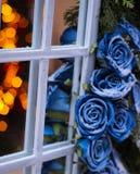 le rose congelate l'inverno rispecchiano l'illuminazione dell'albero di Natale romantica Fotografie Stock