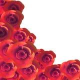 Le rose Copyspace rappresenta Flora Romance And Flower Fotografia Stock
