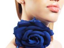 le rose de languettes a monté Photo stock