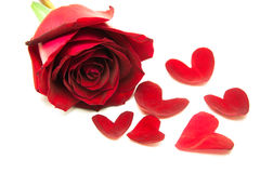 Le rose del regalo sul giorno di S. Valentino, con cuore va Fotografia Stock Libera da Diritti