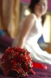 Le rose e la sposa Fotografia Stock Libera da Diritti