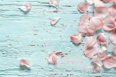 Le rose fleurit le pétale sur la configuration en bois en pastel d'appartement, vue supérieure Image libre de droits