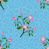 Le rose fleurit sans couture à l'arrière-plan bleu mol, modèle abstrait de floral décoratif Photos libres de droits