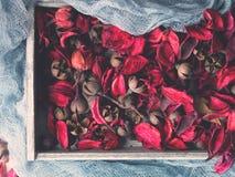 Le rose foncé a séché des fleurs dans un plateau en bois sur le bleu Photo stock