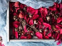 Le rose foncé a séché des fleurs dans un plateau en bois sur le bleu Photos libres de droits