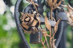 Le rose forgiate da metallo e dal castello hanno lasciato nell'amore con Fotografia Stock Libera da Diritti