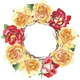 Le rose gialle dell'tè-ibrido del Wildflower fioriscono la corona in uno stile dell'acquerello Immagine Stock