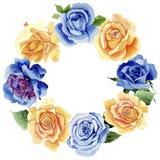 Le rose gialle dell'tè-ibrido del Wildflower fioriscono la corona in uno stile dell'acquerello Immagini Stock Libere da Diritti