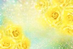 Le rose gialle fioriscono il fondo romanzesco molle con bello scintillio illustrazione di stock