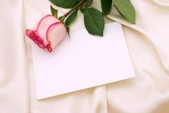 Le rose a monté Photographie stock libre de droits