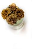 Le rose morte Immagini Stock