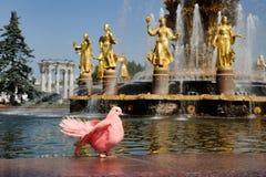 Le rose a plongé à l'amitié de fontaine des nations chez VDNKh Images libres de droits