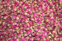 Le rose rosa secche sono usate per tè e per gli scopi medici Immagini Stock