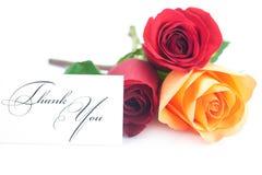 le rose variopinte e la scheda con le parole vi ringraziano Fotografia Stock Libera da Diritti