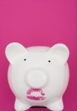 Le rouge à lievres s'usant de porc est toujours un porc Photographie stock libre de droits