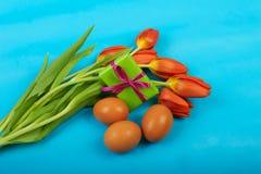 Le rouge de fond de Pâques fleurit des tulipes et des oeufs sur le bleu images libres de droits