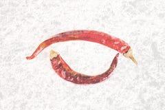 Le rouge deux lumineux pointu a séché des poivrons d'isolement sur le fond blanc Photographie stock